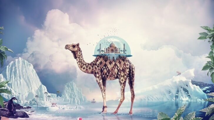 Fantasy Camel Wallpaper