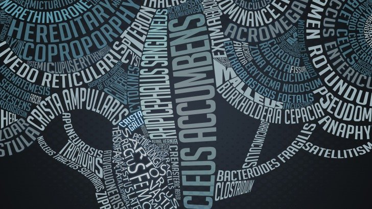La Tree Medicine Wallpaper Typography Hd Wallpapers Hdwallpapers Net