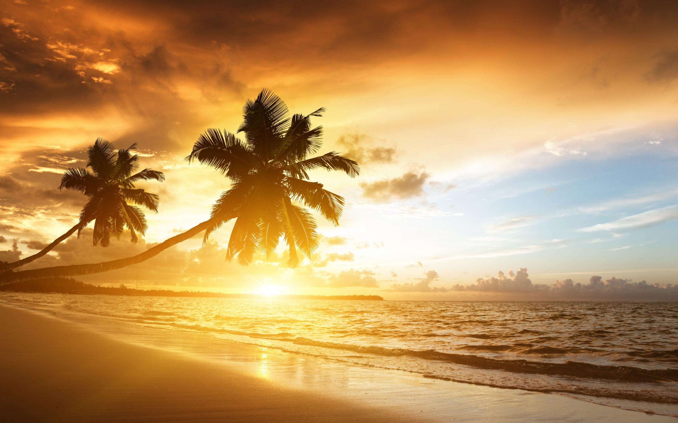 Beach With Palm Trees At Sunset Wallpaper for Desktop 2880x1800