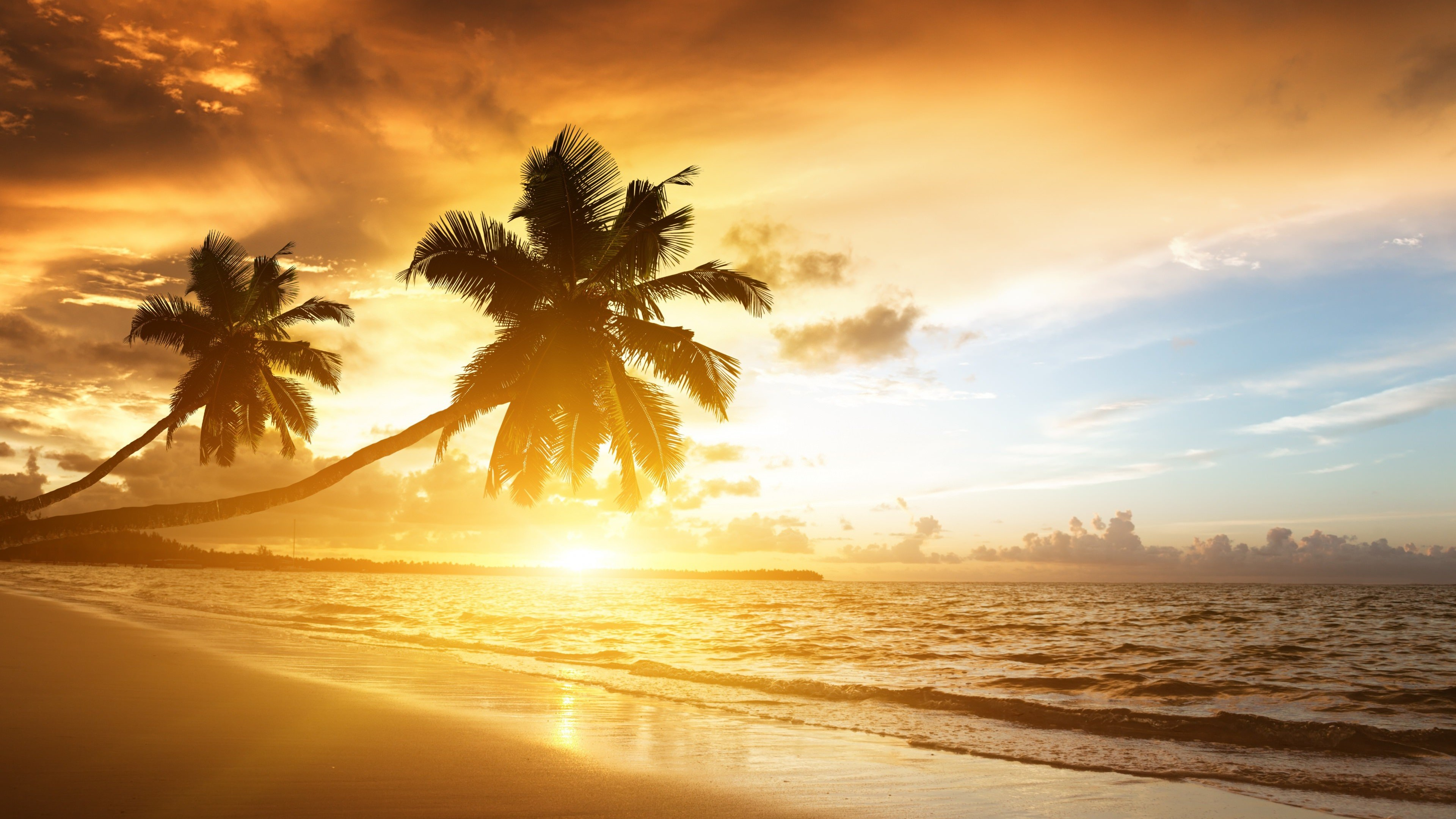 Beach With Palm Trees At Sunset Wallpaper for Desktop 4K 3840x2160