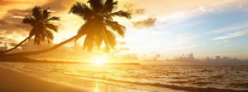 Beach With Palm Trees At Sunset Wallpaper for Social Media Facebook Cover