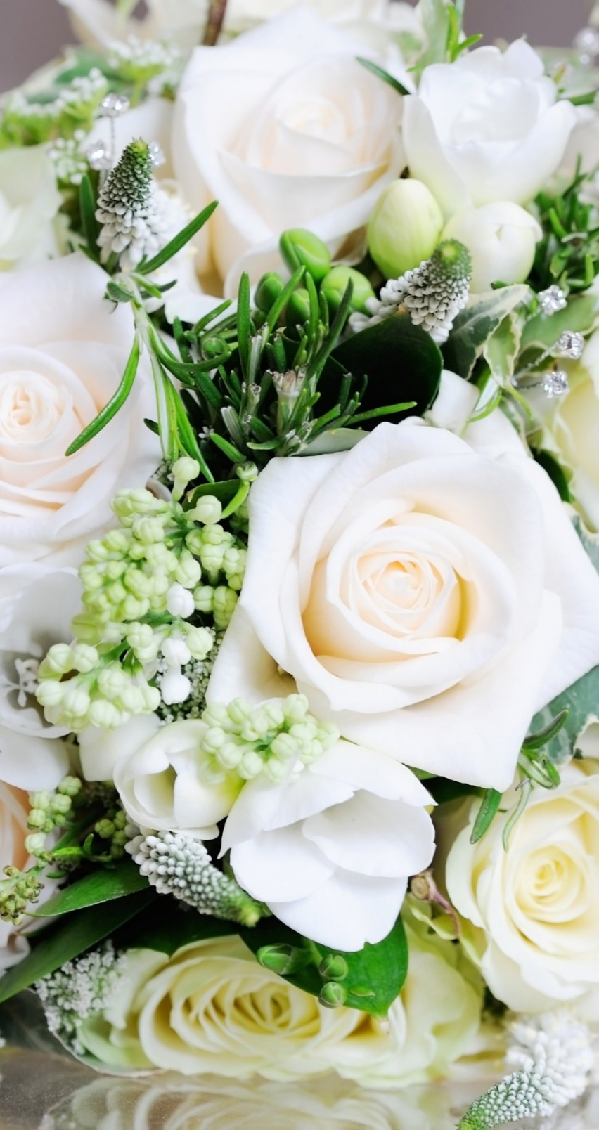 Beautiful White Roses Bouquet Wallpaper for Apple iPhone 6 / 6s