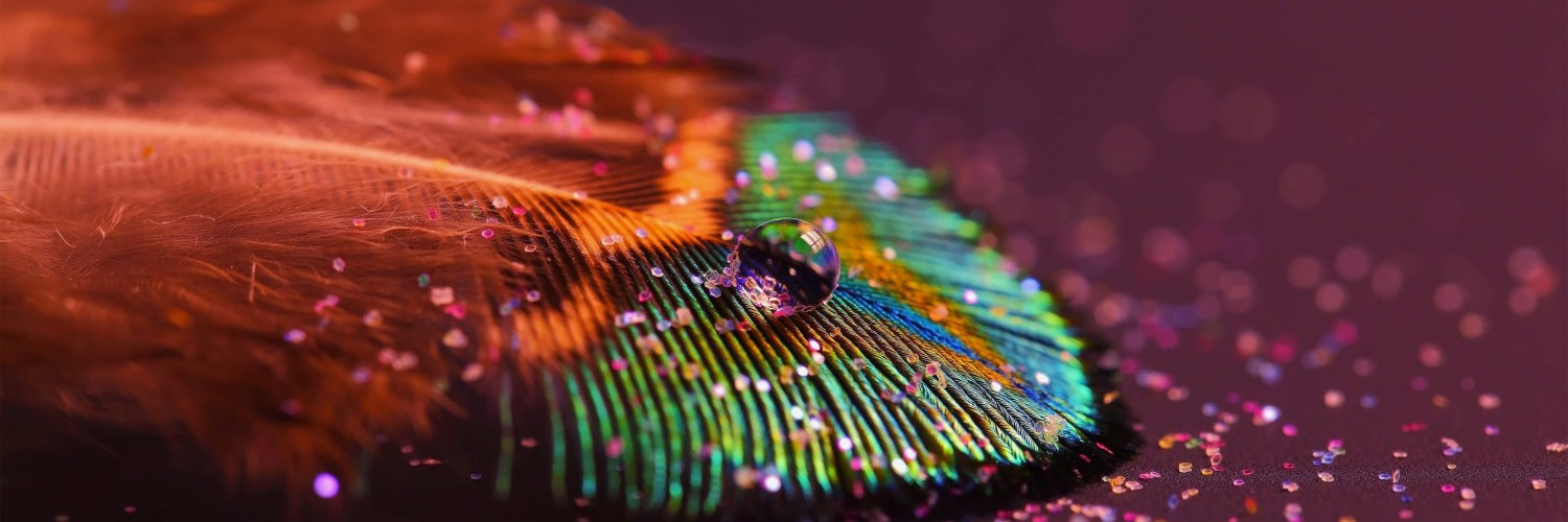 Download Colorful Feather HD wallpaper for Twitter Header ...Feather Background Twitter