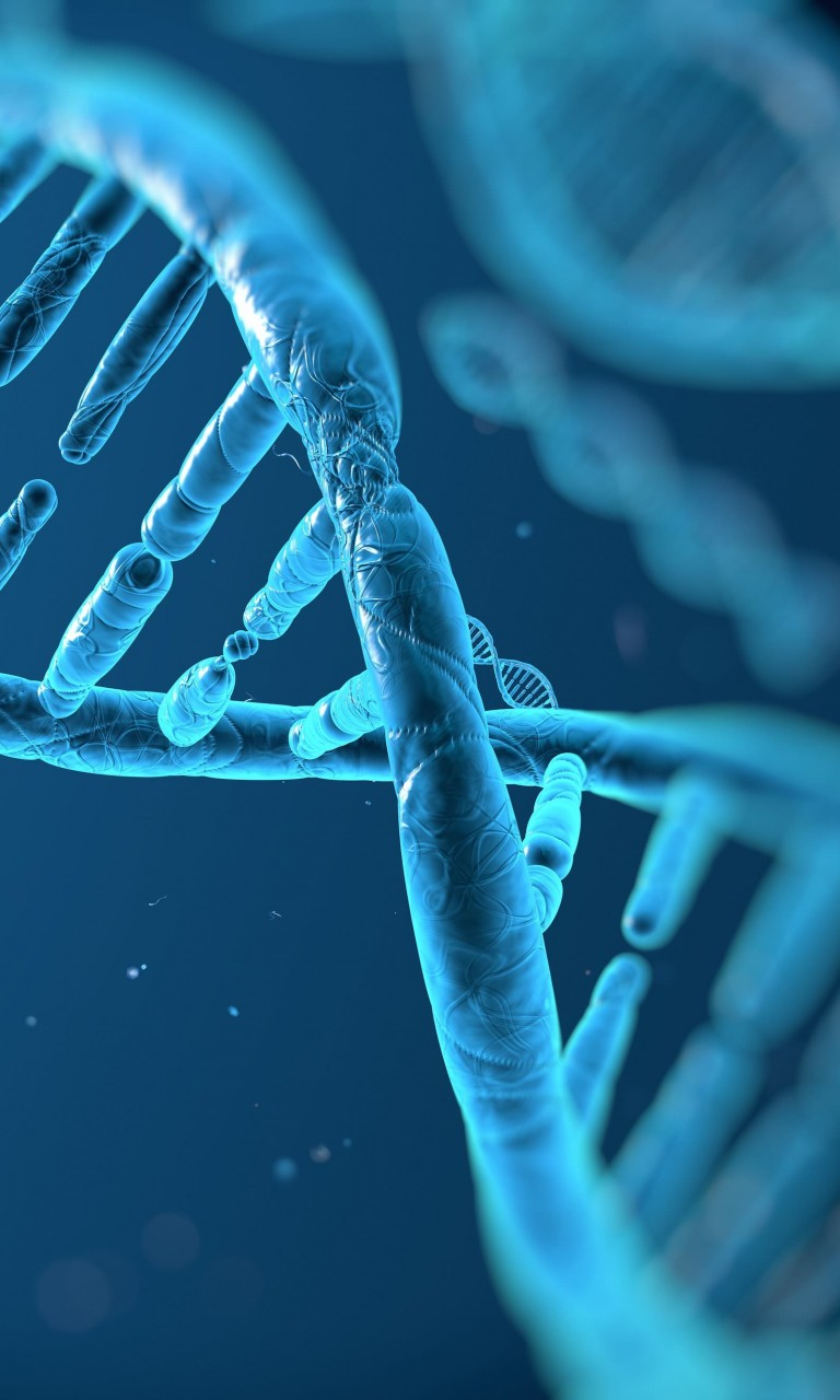 DNA Structure Wallpaper for Google Nexus 4