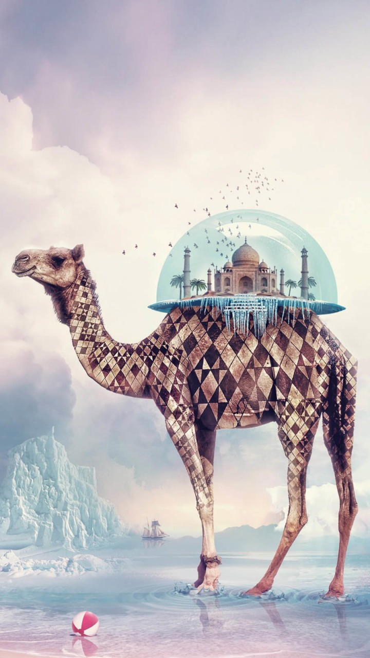 Fantasy Camel Wallpaper for HTC One X