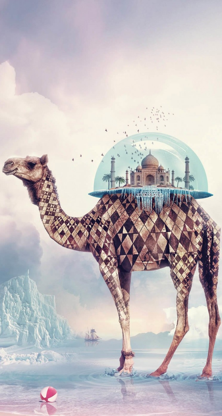 Fantasy Camel Wallpaper for Apple iPhone 5 / 5s