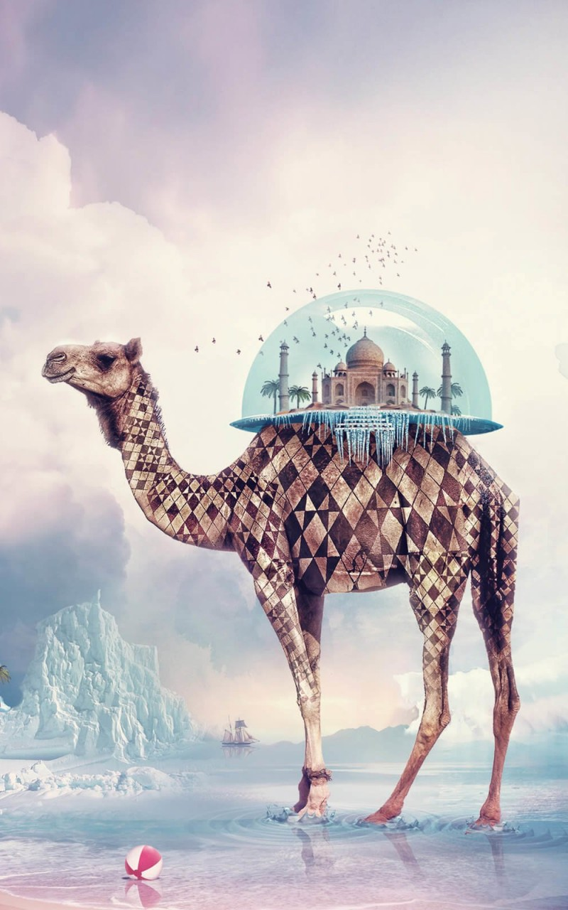 Fantasy Camel Wallpaper for Amazon Kindle Fire HD