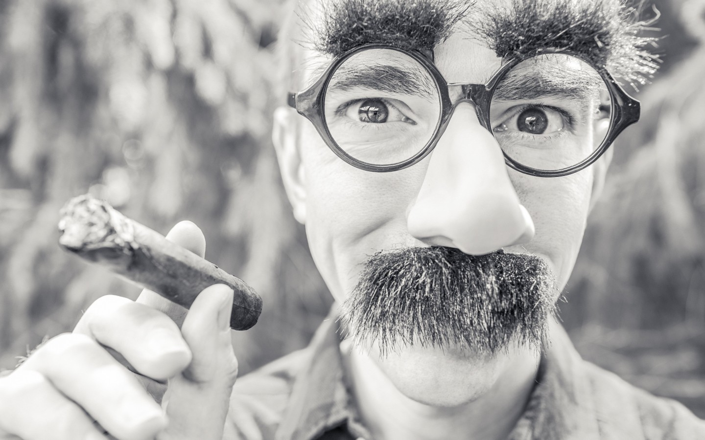 Groucho Glasses Man Wallpaper for Desktop 1440x900