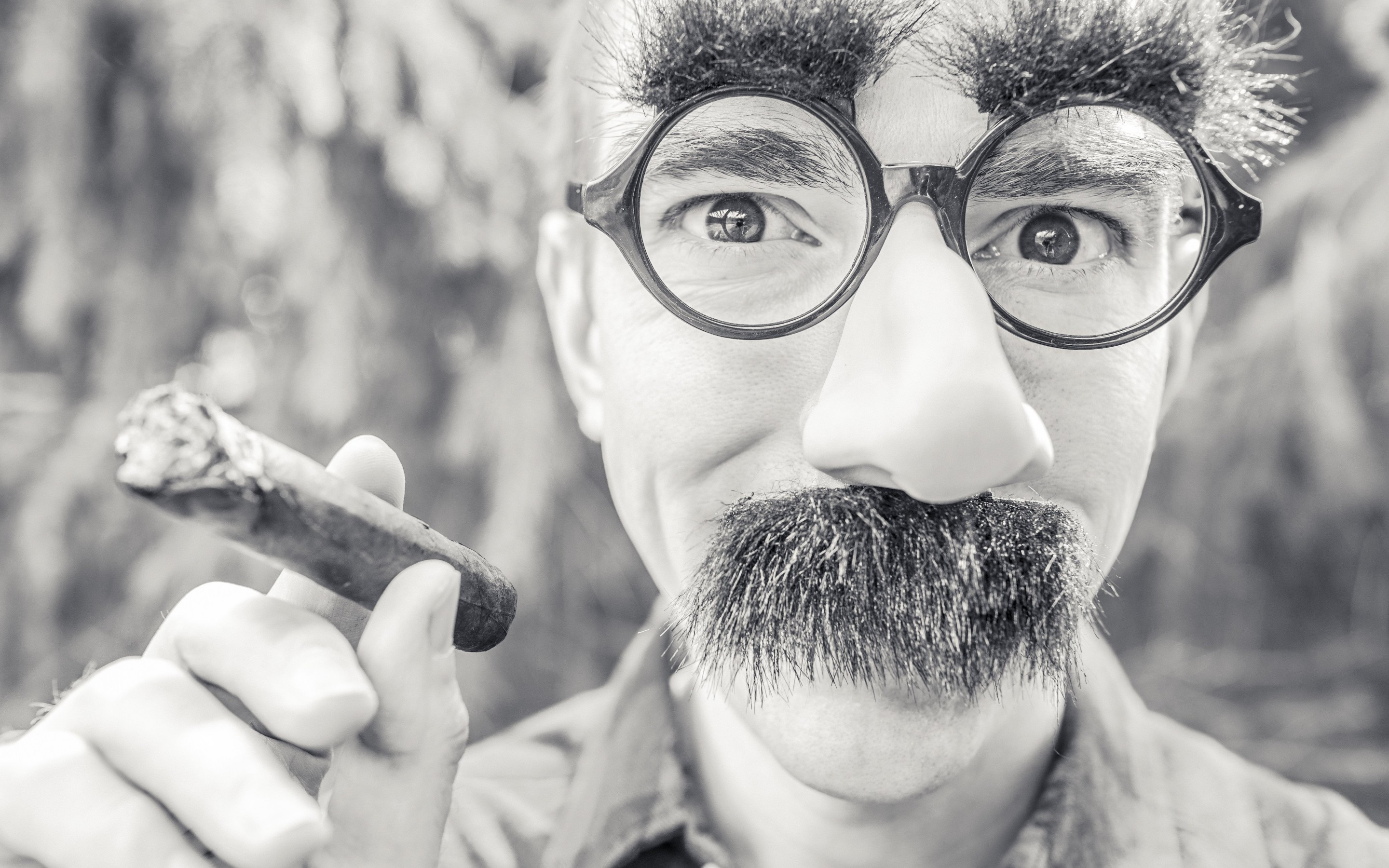 Groucho Glasses Man Wallpaper for Desktop 2880x1800