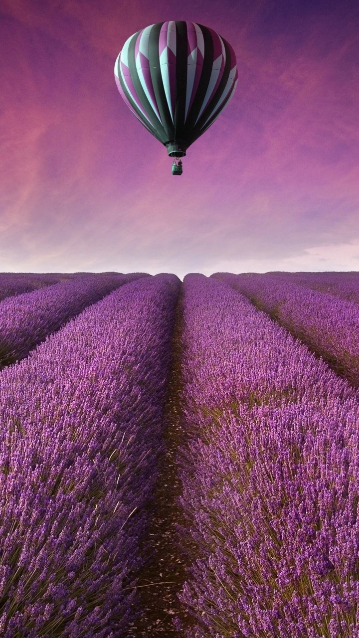 Hot Air Balloon Over Lavender Field Wallpaper for HTC One X