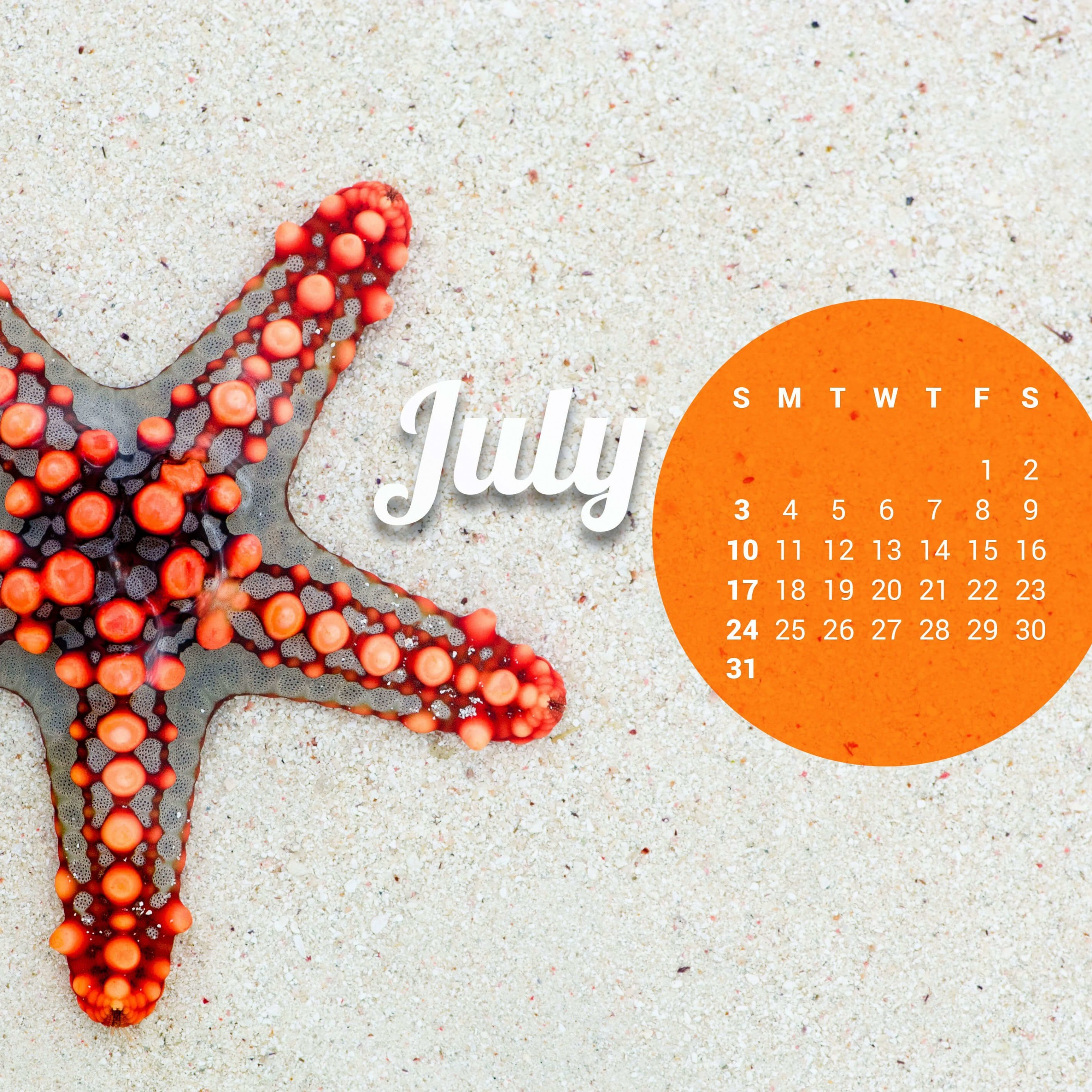 July 2016 Calendar Wallpaper for Apple iPhone 6 Plus