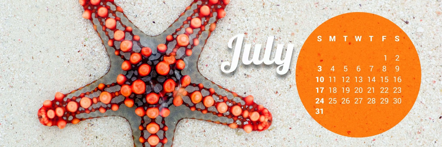 July 2016 Calendar Wallpaper for Social Media Twitter Header