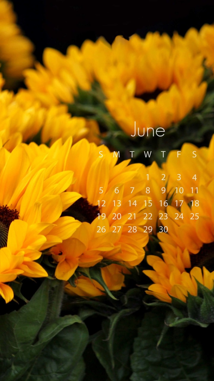 June 2016 Calendar Wallpaper for HTC One mini