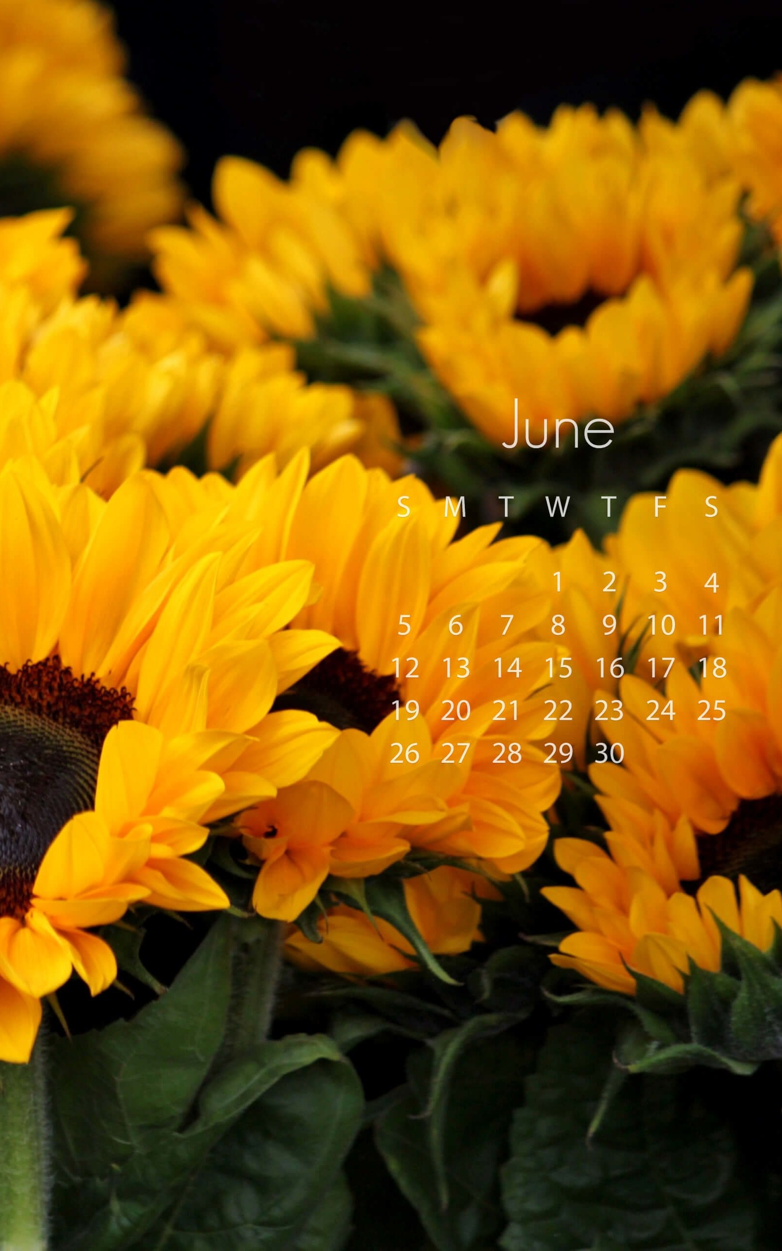 June 2016 Calendar Wallpaper for Amazon Kindle Fire HDX 8.9