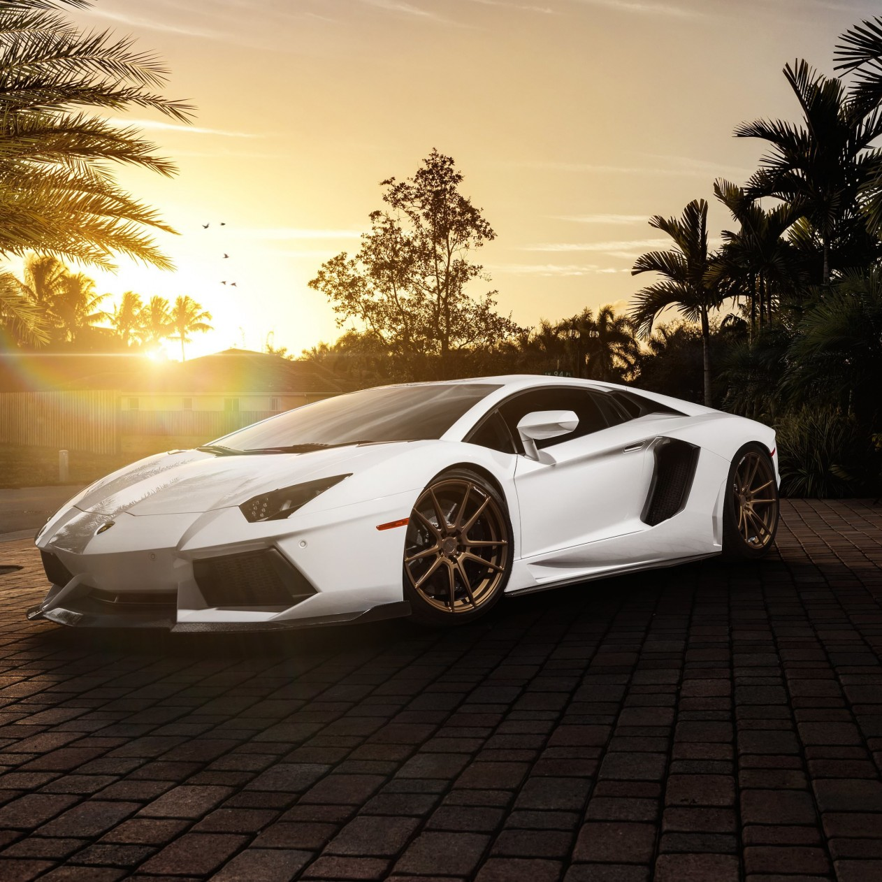 Lamborghini Aventador LP700-4 in White Wallpaper for Apple iPad mini
