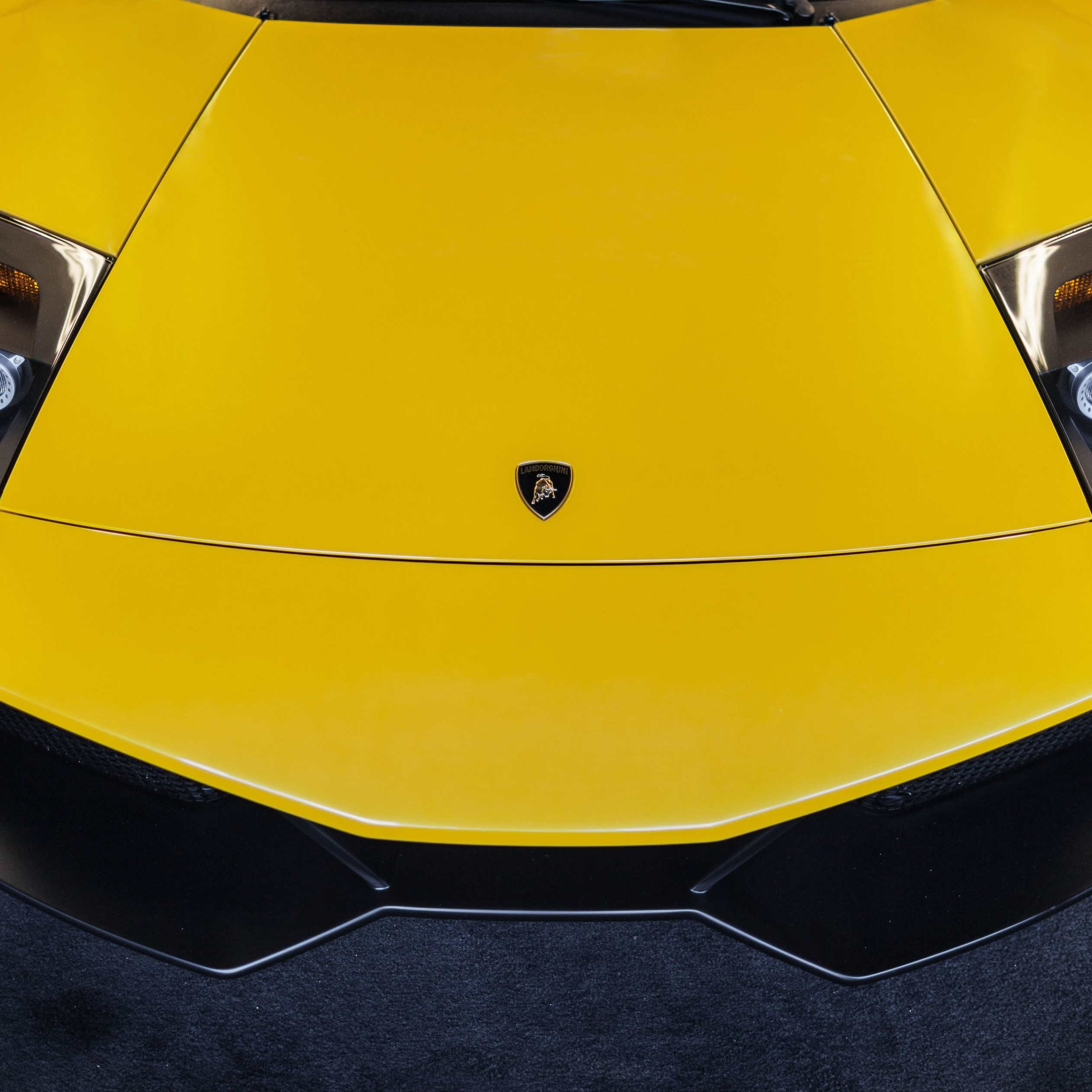 Lamborghini Murcielago LP670 Front Wallpaper for Apple iPad Air