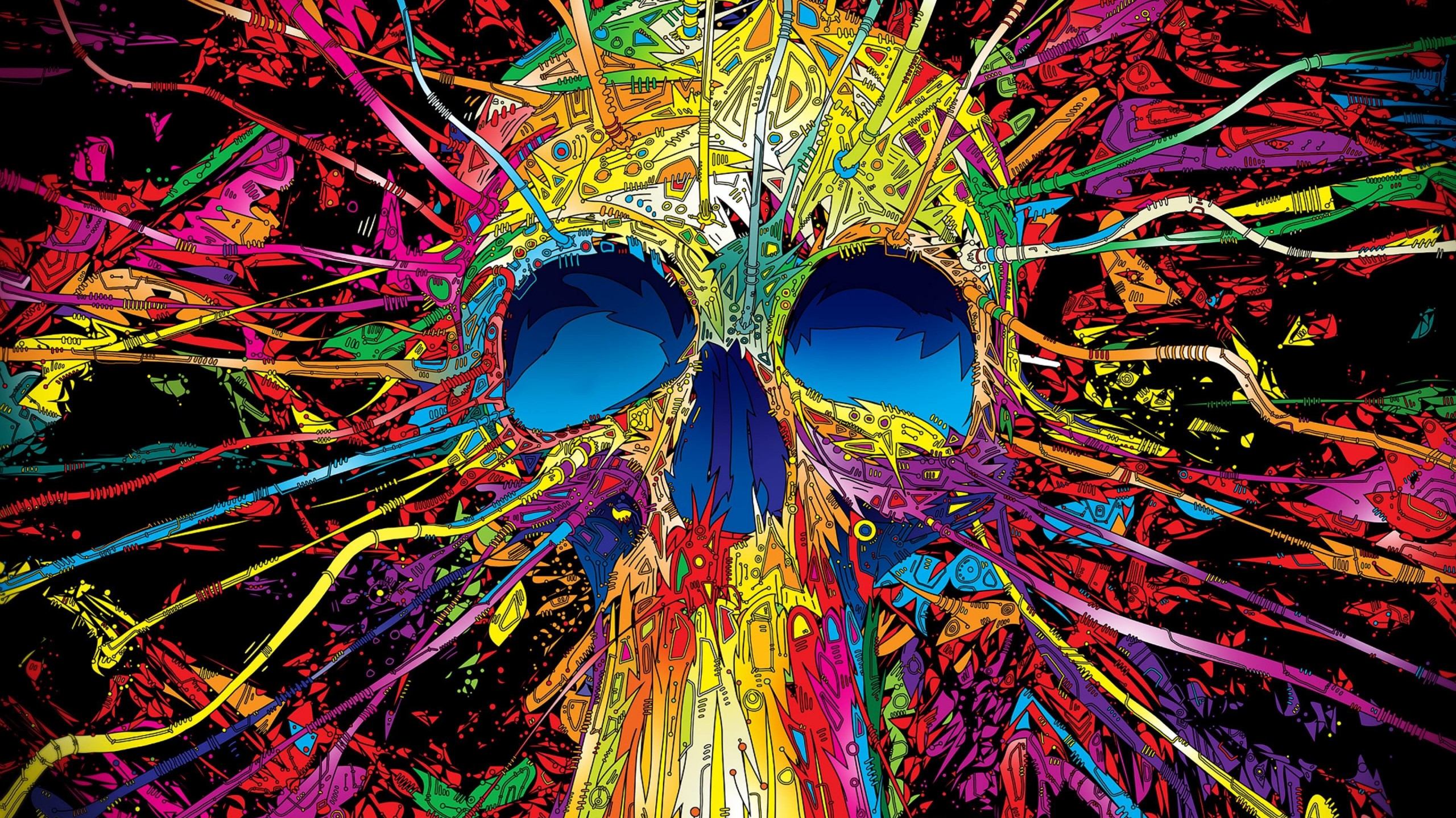 Psychedelic Skull Wallpaper for Desktop 2560x1440