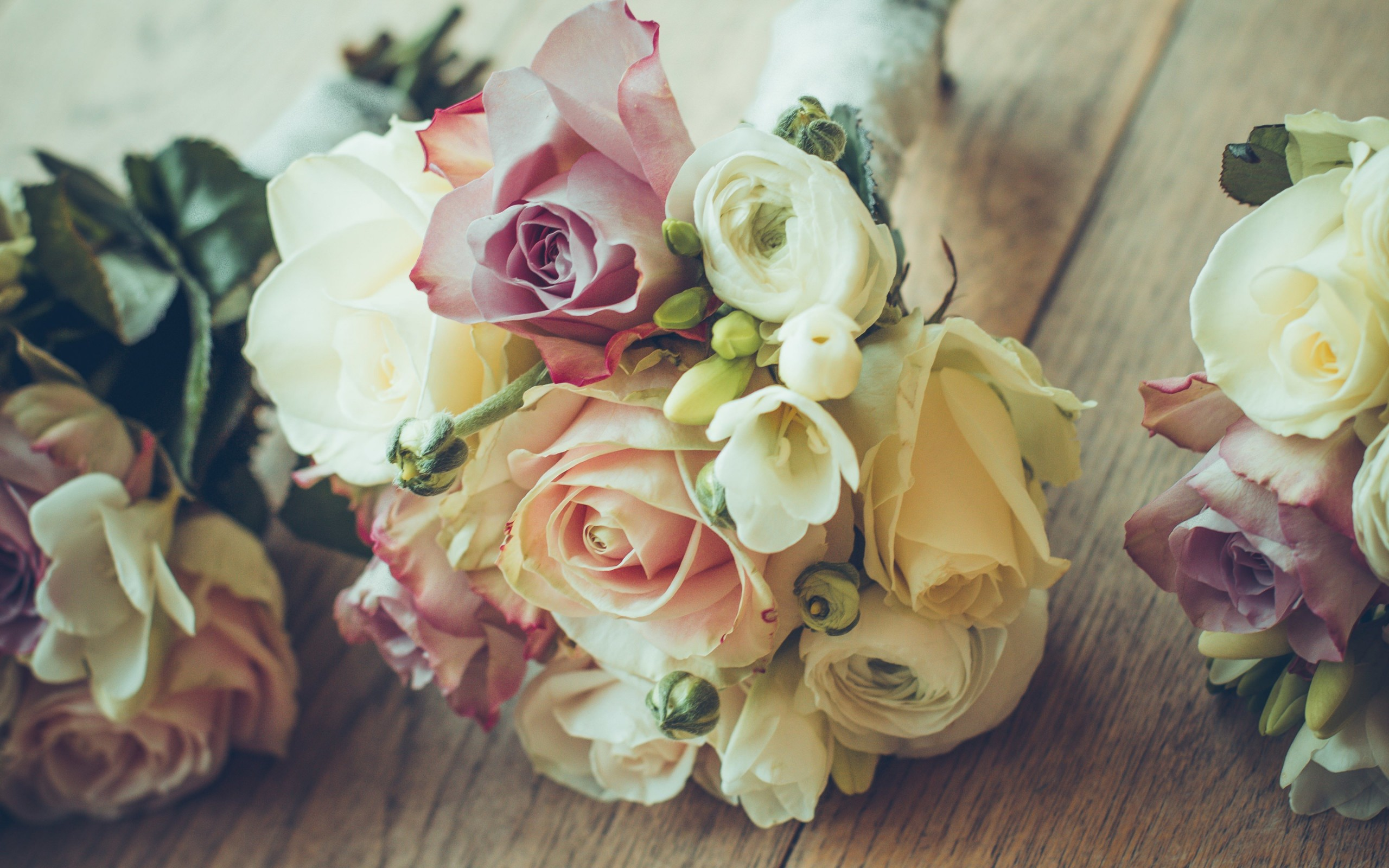 Roses Bouquet Composition Wallpaper for Desktop 2560x1600