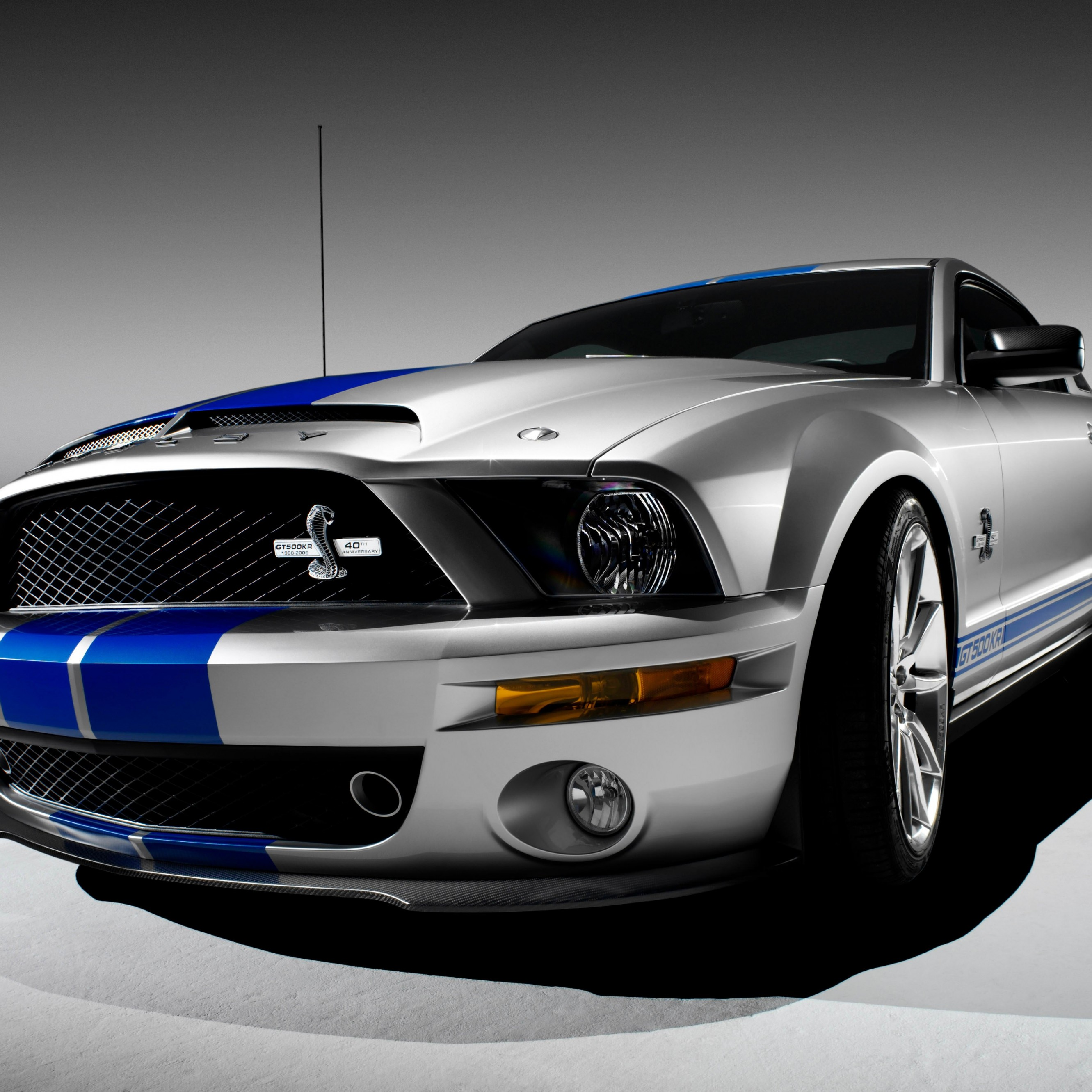 Download Shelby Mustang GT500KR HD Wallpaper For IPhone 6