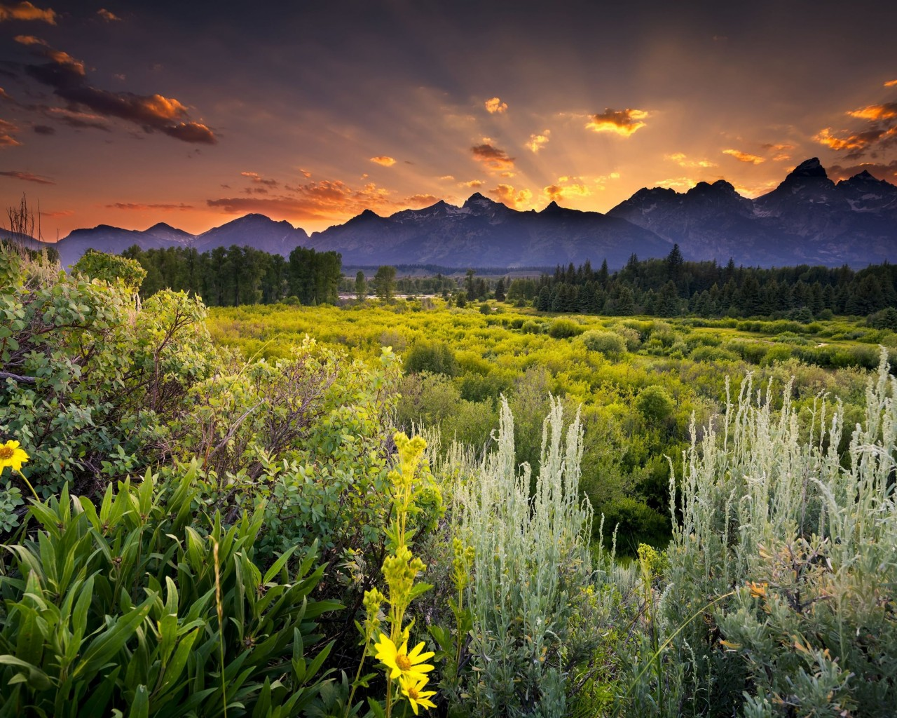 Sunset in Grand Teton National Park Wallpaper for Desktop 1280x1024
