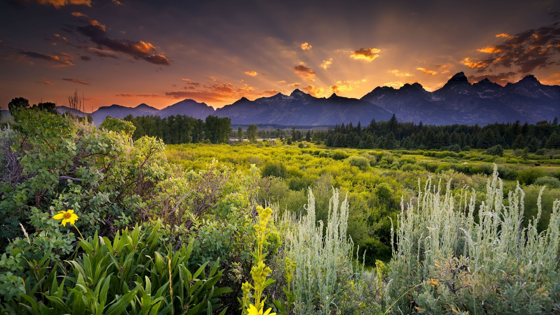 Sunset in Grand Teton National Park Wallpaper for Desktop 1920x1080