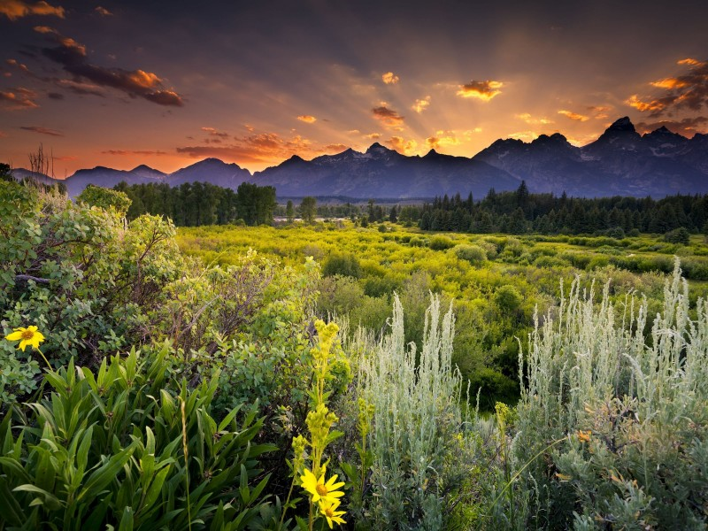 Sunset in Grand Teton National Park Wallpaper for Desktop 800x600