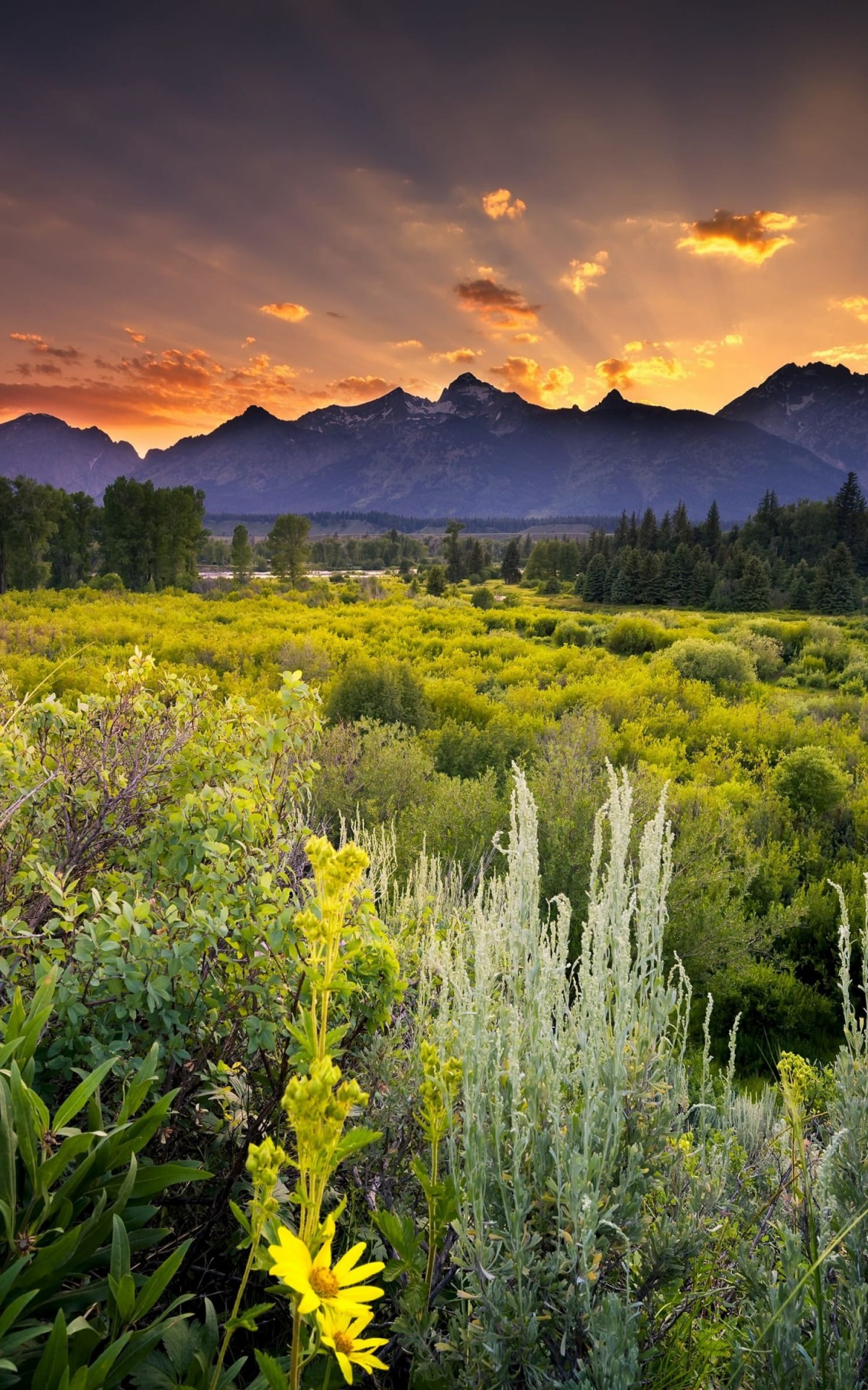 Sunset in Grand Teton National Park Wallpaper for Amazon Kindle Fire HDX