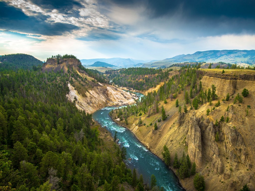 The River, Grand Canyon of Yellowstone National Park, USA Wallpaper for Desktop 1024x768