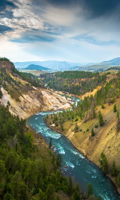 The River, Grand Canyon of Yellowstone National Park, USA Wallpaper for HTC Desire HD