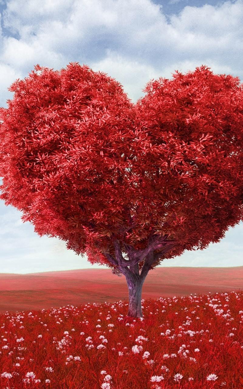The Tree Of Love Wallpaper for Amazon Kindle Fire HD