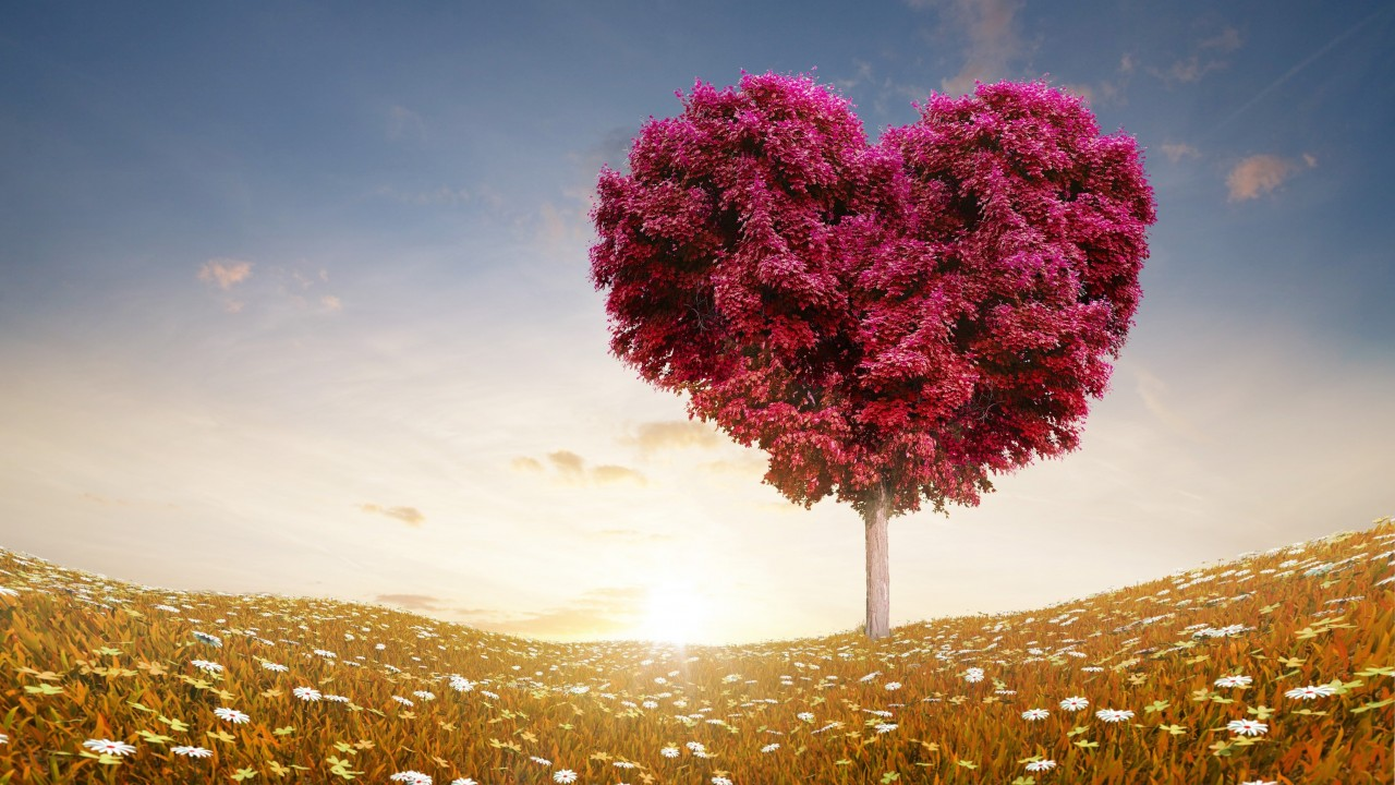Tree Of Love Wallpaper for Desktop 1280x720