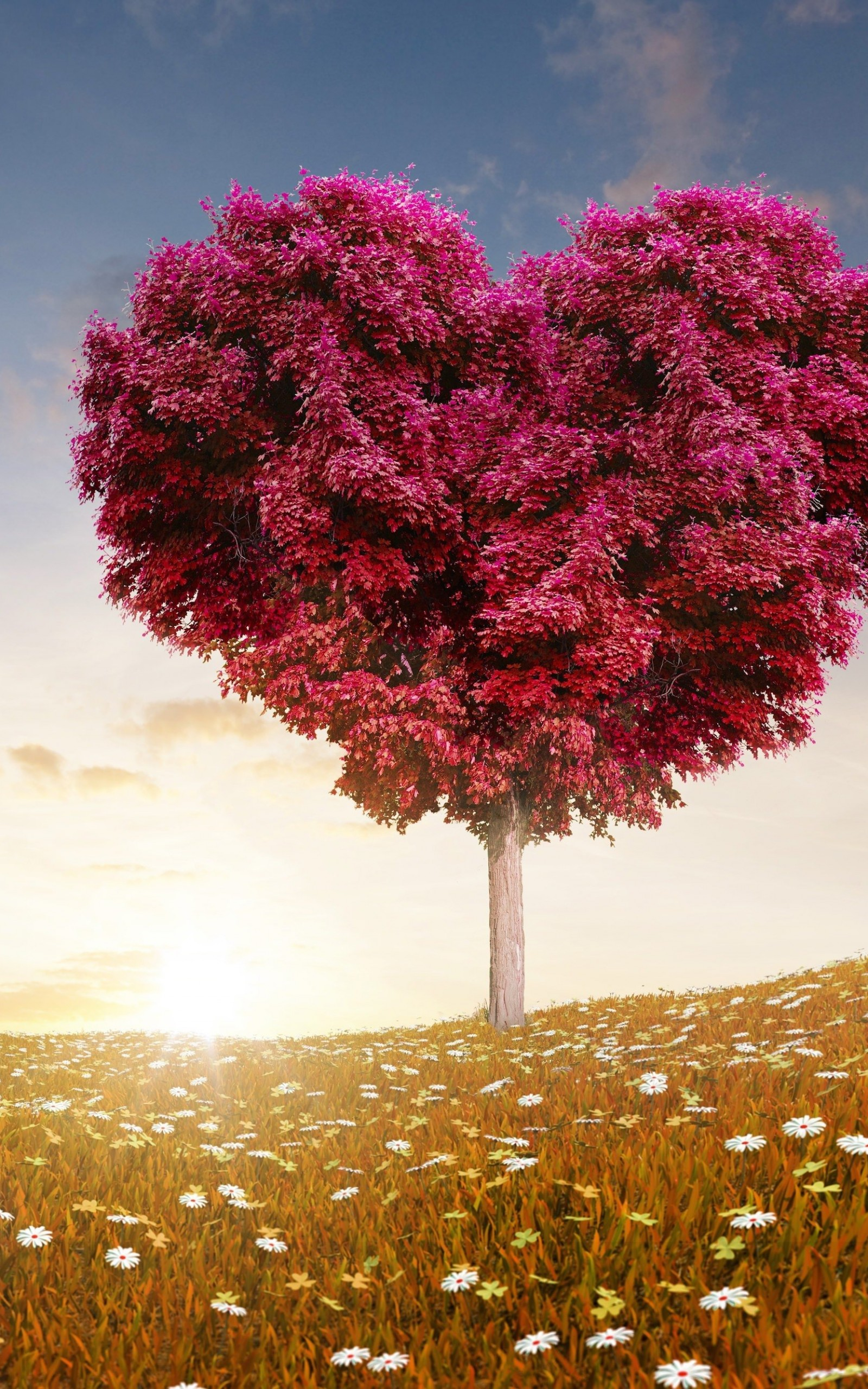 Tree Of Love Wallpaper for Amazon Kindle Fire HDX 8.9