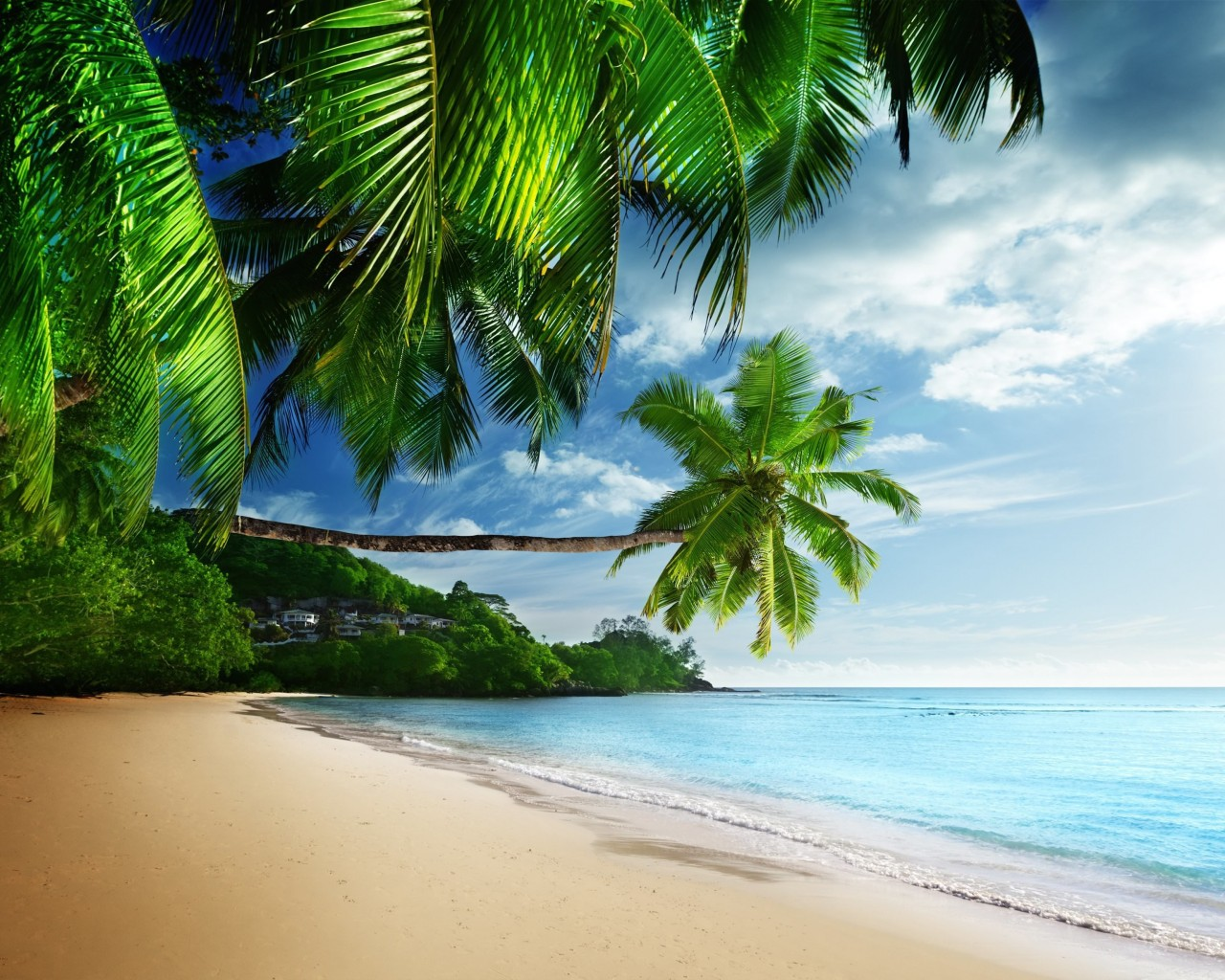 Tropical Paradise Beach Wallpaper for Desktop 1280x1024