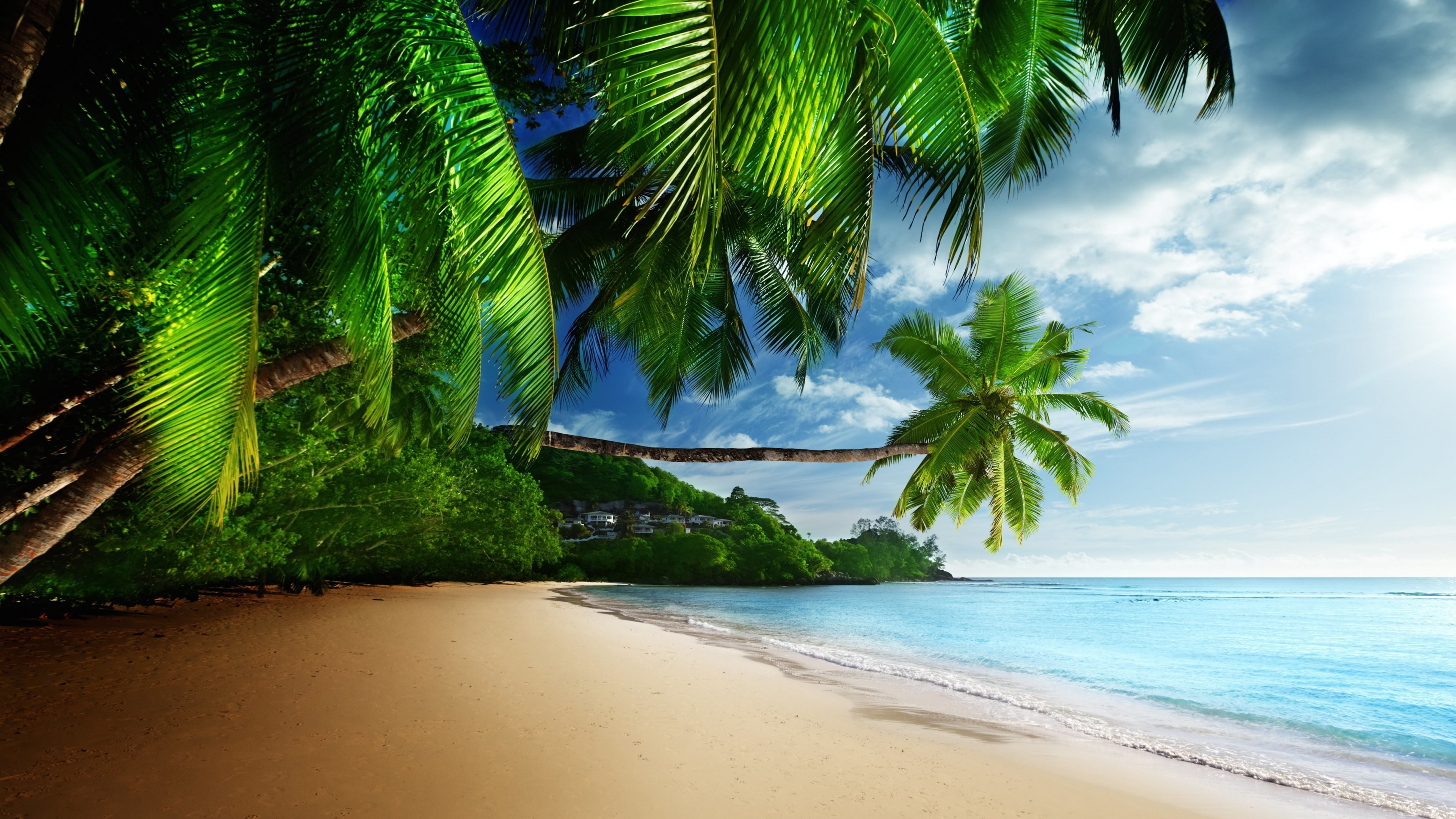 Tropical Paradise Beach Wallpaper for Desktop 4K 3840x2160