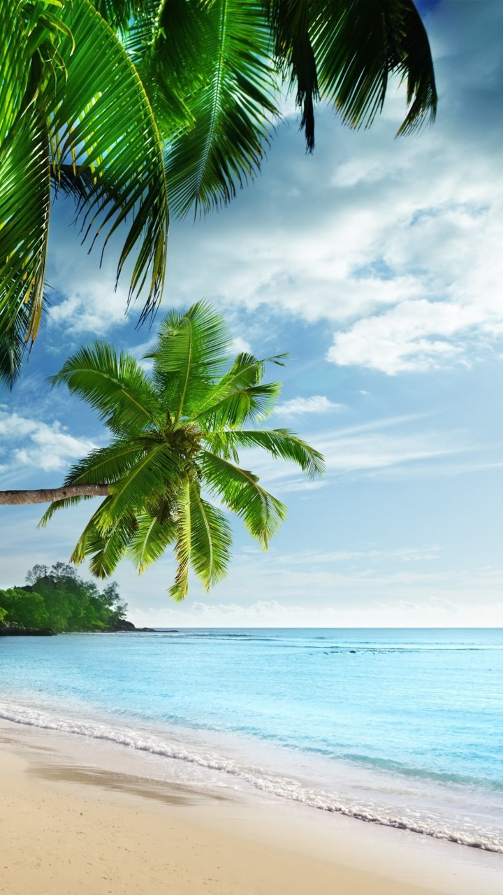 Tropical Paradise Beach Wallpaper for SAMSUNG Galaxy S3
