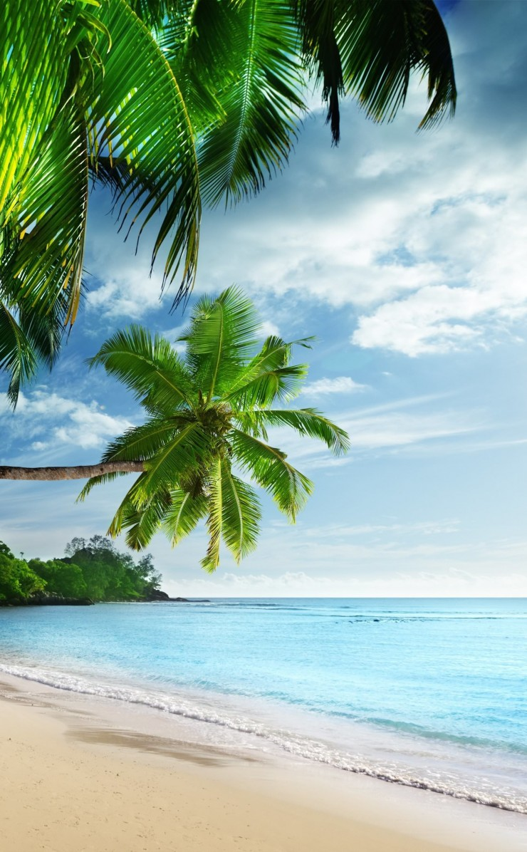 Tropical Paradise Beach Wallpaper for Apple iPhone 4 / 4s