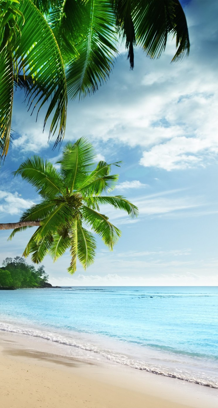 Tropical Paradise Beach Wallpaper for Apple iPhone 5 / 5s