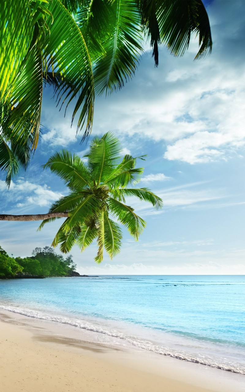 Tropical Paradise Beach Wallpaper for Amazon Kindle Fire HD