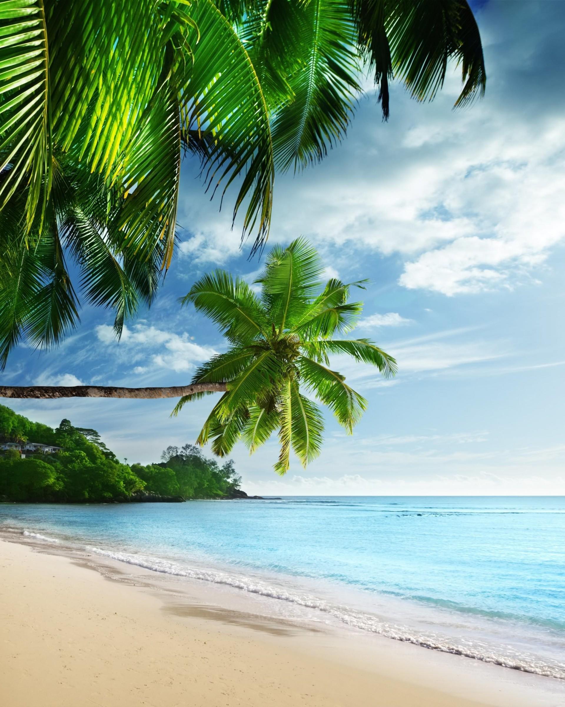 Download Tropical Paradise Beach HD wallpaper for Nexus 7 ...