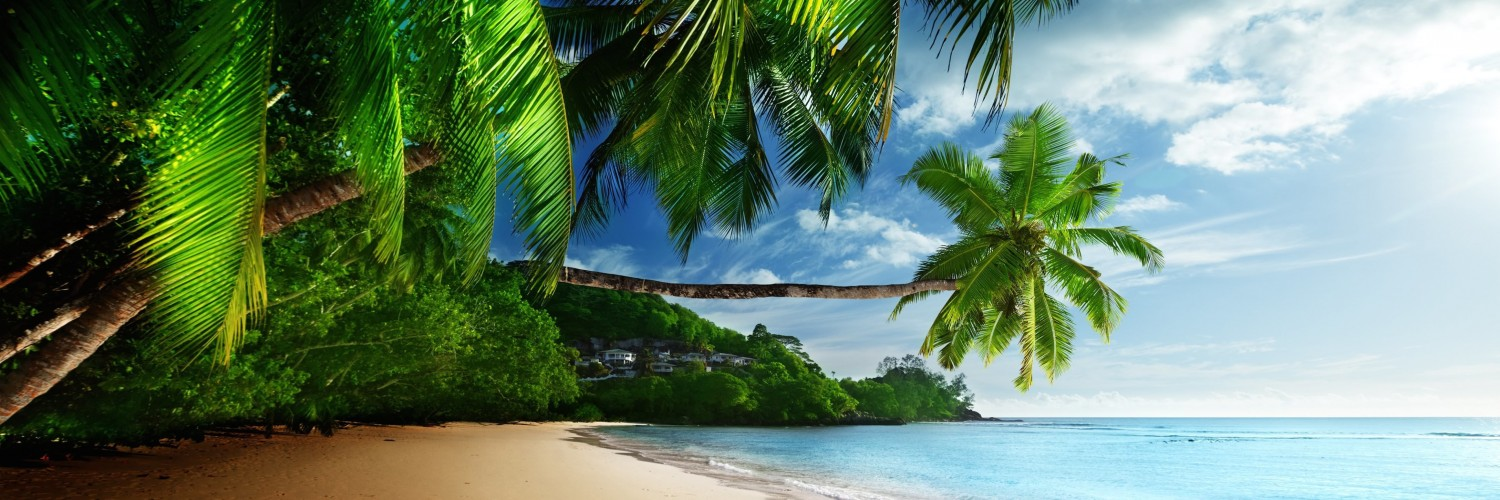 Tropical Paradise Beach Wallpaper for Social Media Twitter Header