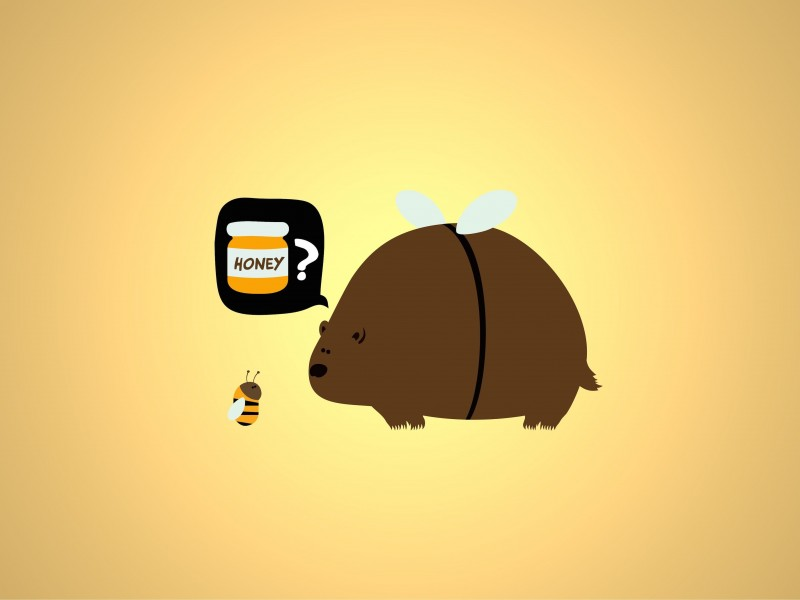 When a Bear Meet a Bee Wallpaper for Desktop 800x600