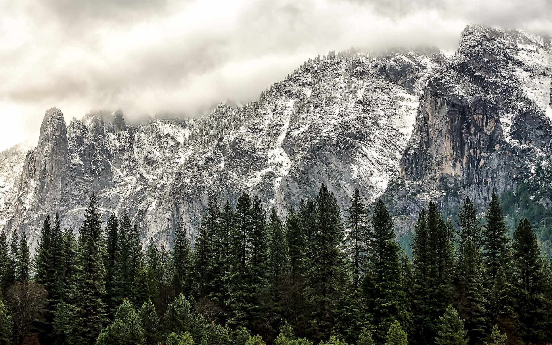 Winter Day at Yosemite National Park Wallpaper for Desktop 1920x1200