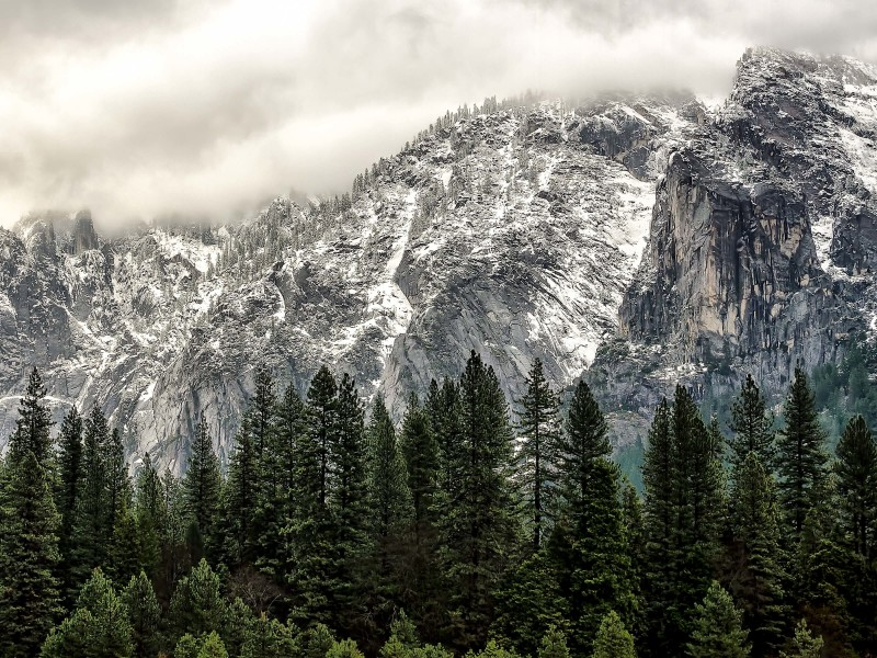 Winter Day at Yosemite National Park Wallpaper for Desktop 800x600