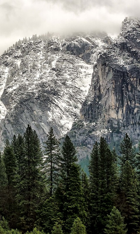 Winter Day at Yosemite National Park Wallpaper for HTC Desire HD