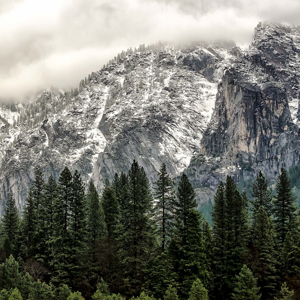 Winter Day at Yosemite National Park Wallpaper for Apple iPad