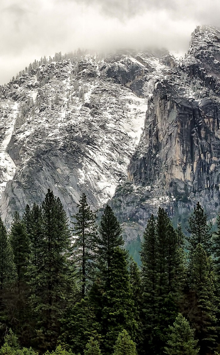 Winter Day at Yosemite National Park Wallpaper for Apple iPhone 4 / 4s