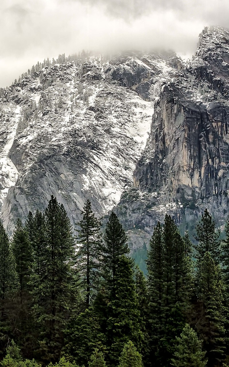 Winter Day at Yosemite National Park Wallpaper for Amazon Kindle Fire HD