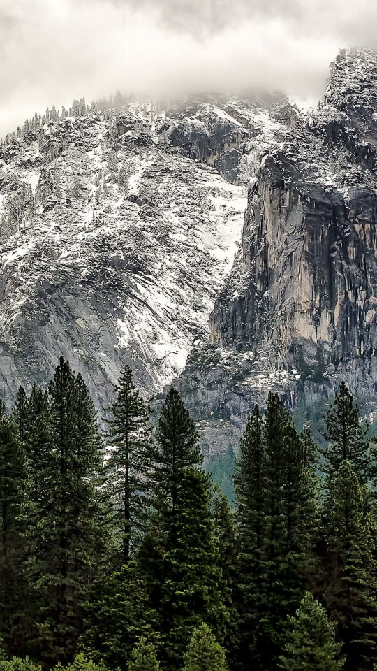 Winter Day at Yosemite National Park Wallpaper for LG G2 mini