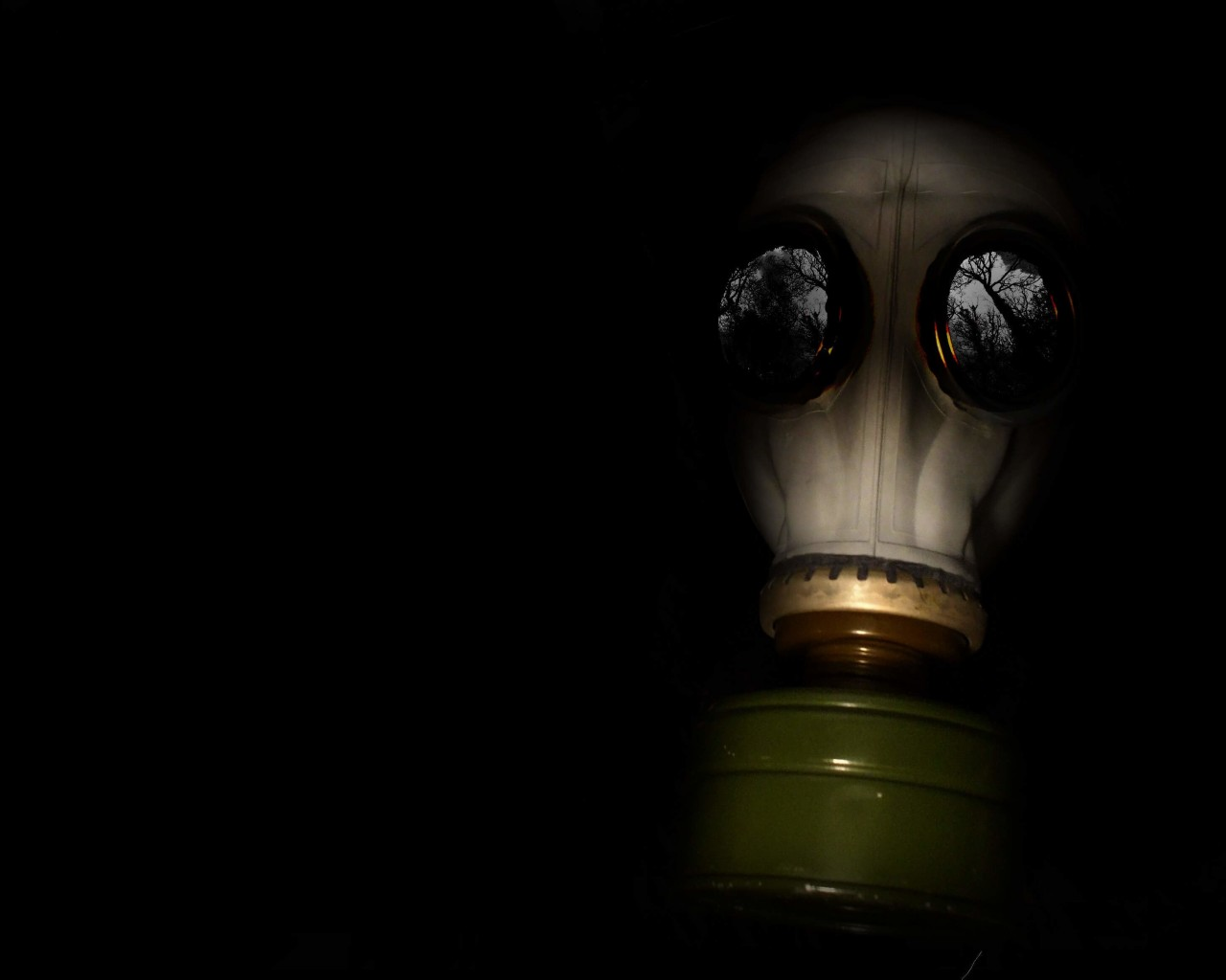 WWII Gas Mask Wallpaper for Desktop 1280x1024